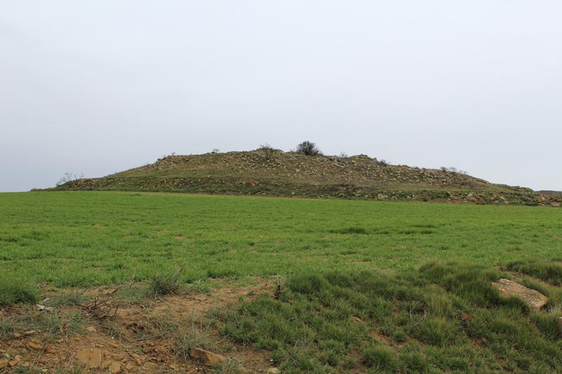 Necrópolis de San Roman