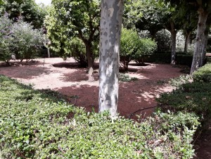Rehabilitación de zonas verdes de Biota